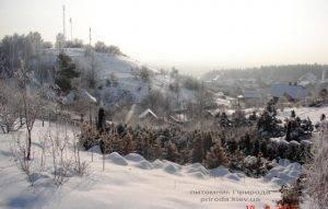 Питомник растений Природа зимой ФОТО (8)